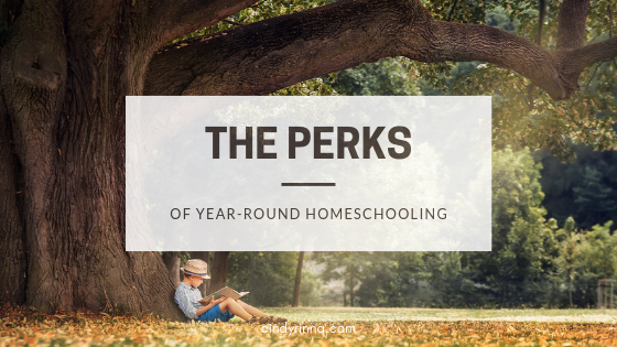 The Perks of Year-Round Homeschooling